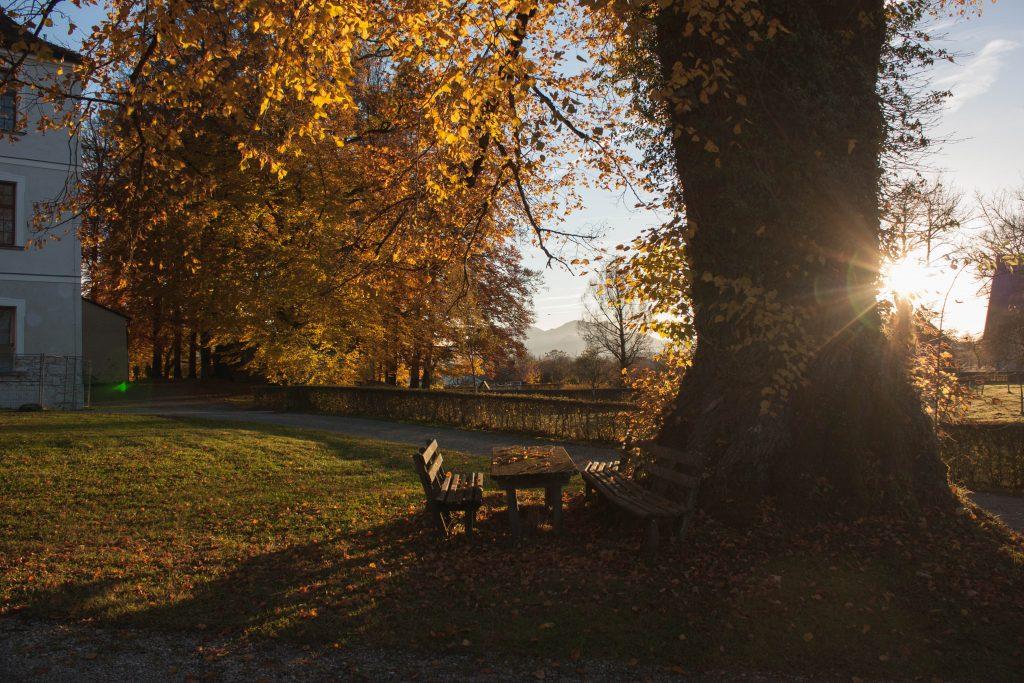 Lumière d'automne, Chiemsee, Bavière, Allemagne